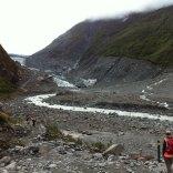 Glacier Fox en 2014