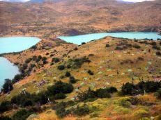 Reforestation du parc Torres Del Paine après le terrible incendie de fin 2011 - début 2012