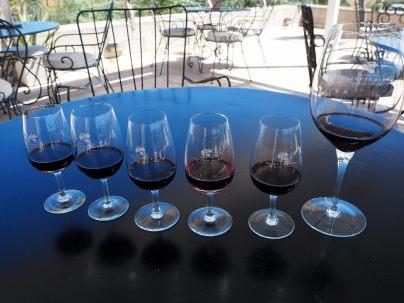 Dégustation de vins de Tempus Alba, Mendoza