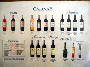 Notes de dégustation des vins de Carinea, Mendoza
