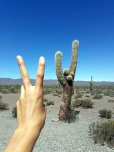 Cachi Pampa dans le parc national Los Cordones, on s'amuse bien hein ?!