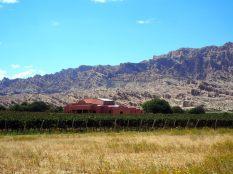 Une bodega sur la route entre Molinos et Cafayate