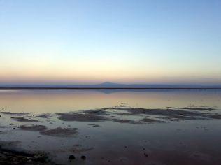 Laguna Chaxa de la Reserva de los flamencos, à l'aube
