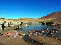Les bains thermaux aux Geysers du Tatio