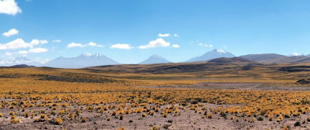 Panorama des volcans bordant l'altiplano