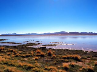 Laguna Vinto, Sud Lipez