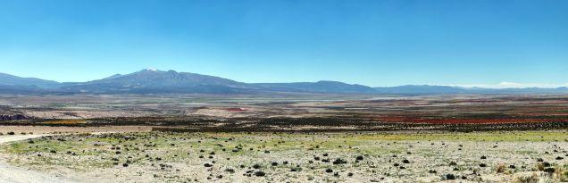 Panorama sur les champs de Quinoa
