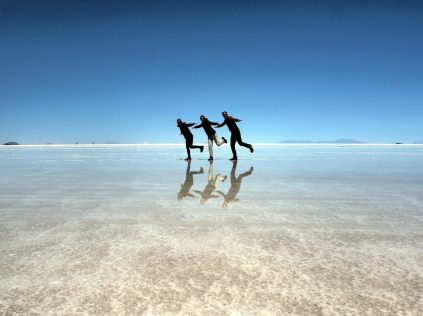 Un trio de flamants de passage au salar d'Uyuni