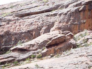 Un rocher en forme de tortue au parc de Toro Toro
