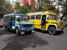 Les nombreux bus et micro de La Paz