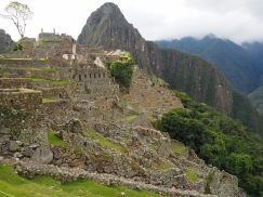Dernier coup d'oeil sur les terrasses du Machu Picchu