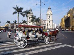 Plaza Mayor (Cathédrale au fond, Hotel de ville à droite)