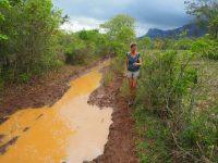 Après la pluie dans la campagne de Vinales