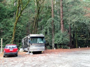 We where parked in some really big redwoods   did not see a lot of sun.