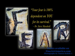 """""""Your fear is 100% dependent on YOU for its survival."""" – Dr. Steve Maraboli. One of the quotes which is included in the book """"On Becoming a Lemonade Maker"""" by Tamara Kulish. Each of these letters are carved into the Aspen trees high up in the mountains over Santa Fe, New Mexico."""