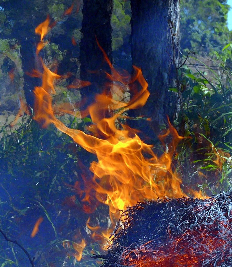 A Little Fire