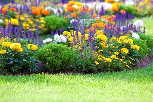 Flower Bed Cultivation | Landscaping & Hardscaping