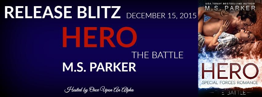 Hero 3 RB Banner