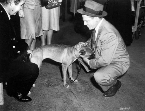 Jimmy Cagney