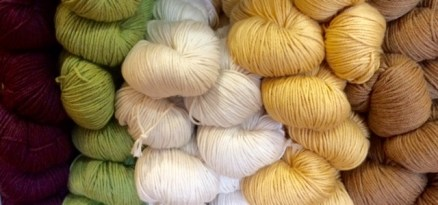 Pima Cotton 2