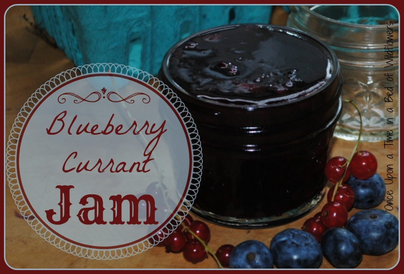 Blueberry Currant Jam // Once Upon a Time in a Bed of Wildflowers