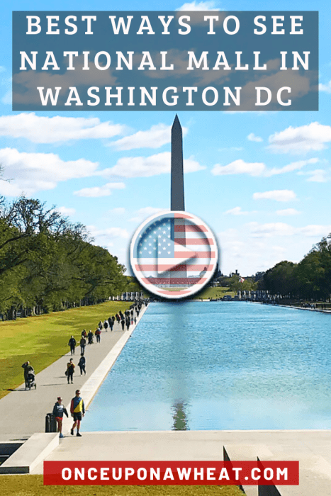 Best Ways to See National Mall in Washington DC Pin