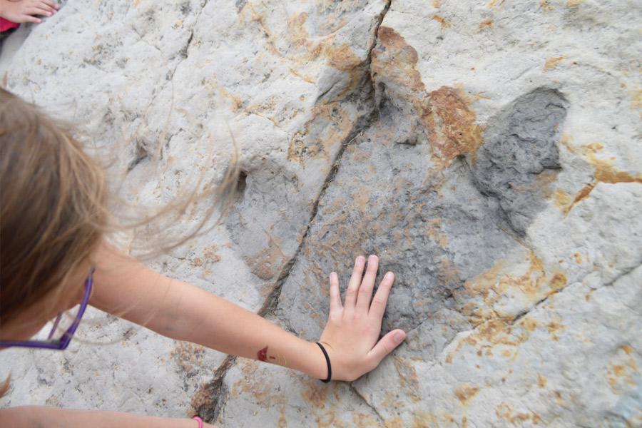 Dino Ridge hand Insta