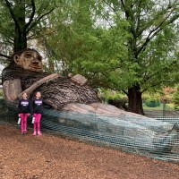 Visit Forest Giants at Bernheim Forest in Kentucky!