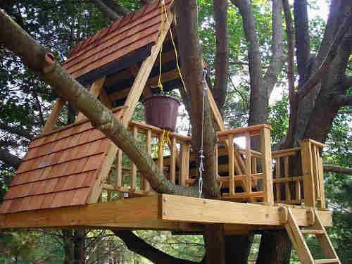 les plans de construction de la cabane dans les arbres forme