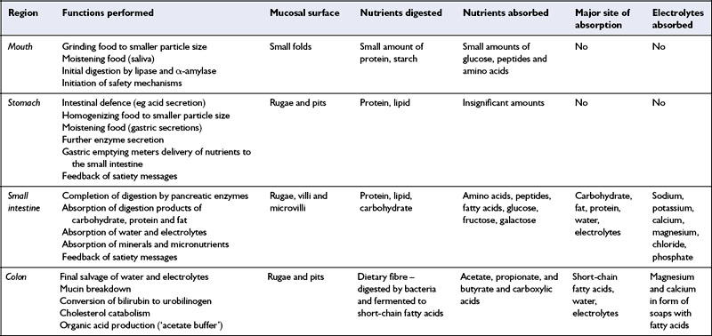 Diet And The Gastrointestinal Tract Oncohema Key