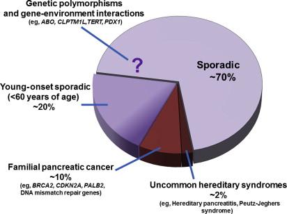 Familial pancreatic cancer. Pancreatic cancer familial, Cancer familial syndromes