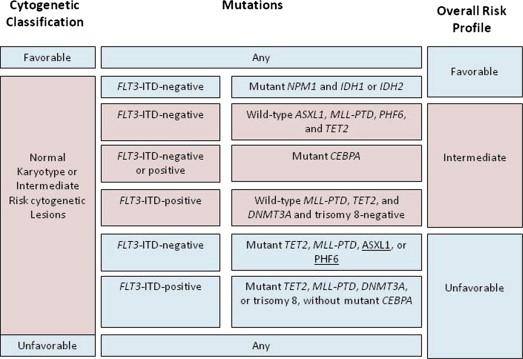 Advances in the Treatment of Acute Myeloid Leukemia: New