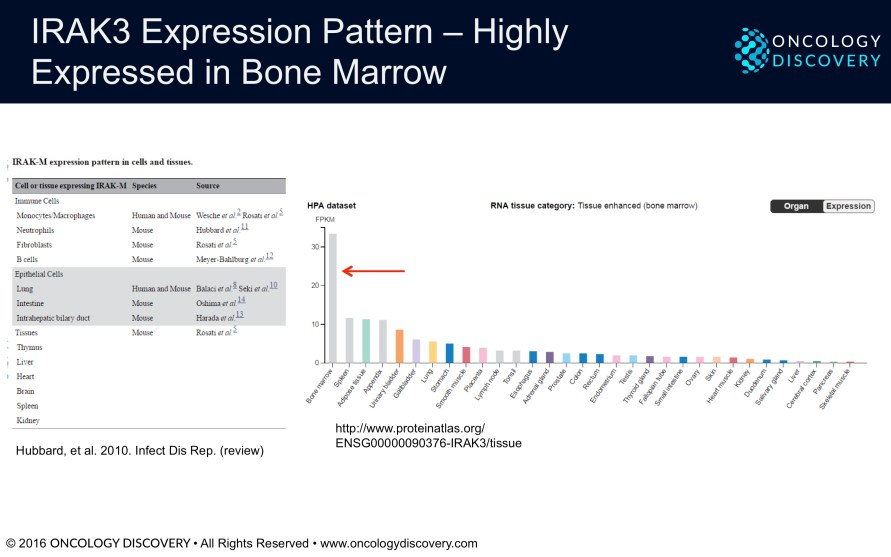 Figure 4. IRAK3 Expression Pattern - Highly Expressed in Bone Marrow