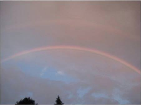 Fathers Day Rainbow