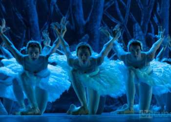 As usual, the public can also enjoy the classics: Giselle, Coppelia, The Sleeping Beauty and The Swan Lake, performed by the National Ballet of Cuba