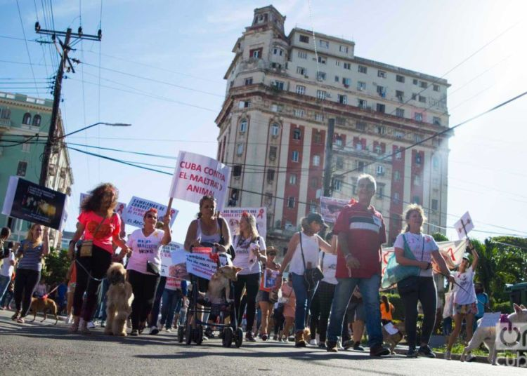 March against animal abuse, April 7, 2019 in Havana. Photo: Otmaro Rodríguez.