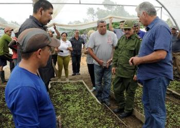 Cuban President Miguel Díaz-Canel on a tour of an agricultural enterprise. Photo: Estudios Revolución / Archive.