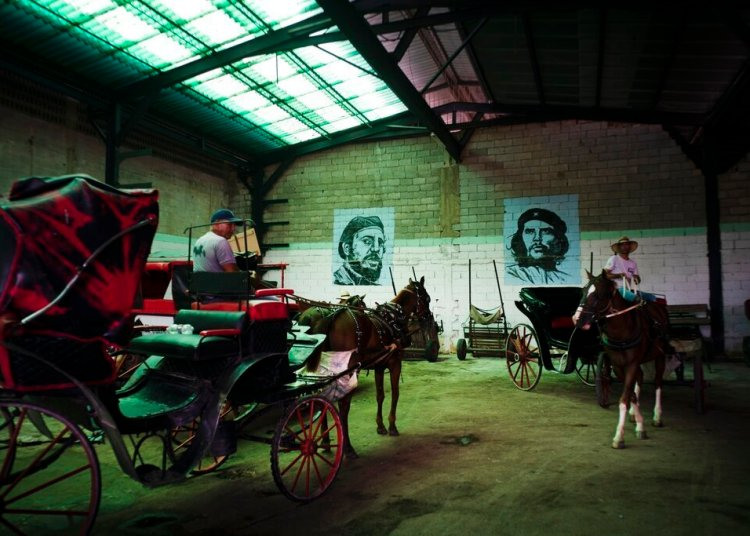 """Horse-drawn carriages used to give tours to tourists, parked in the garage of a cooperative, under the murals of Fidel Castro and Ernesto """"Che"""" Guevara, in Havana, Cuba. Photo: Ramón Espinosa / AP."""