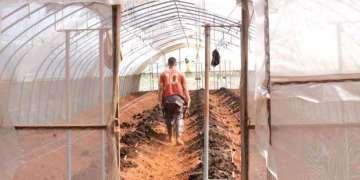 Terralismo: cultivar el cambio