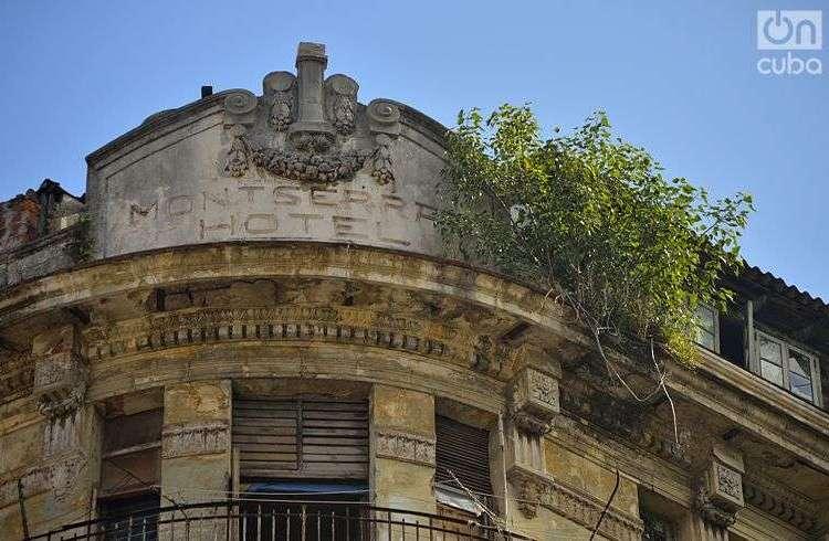 En las fachadas de antiguos edificios se ven plantas. Fotos: Otmaro Rodríguez.
