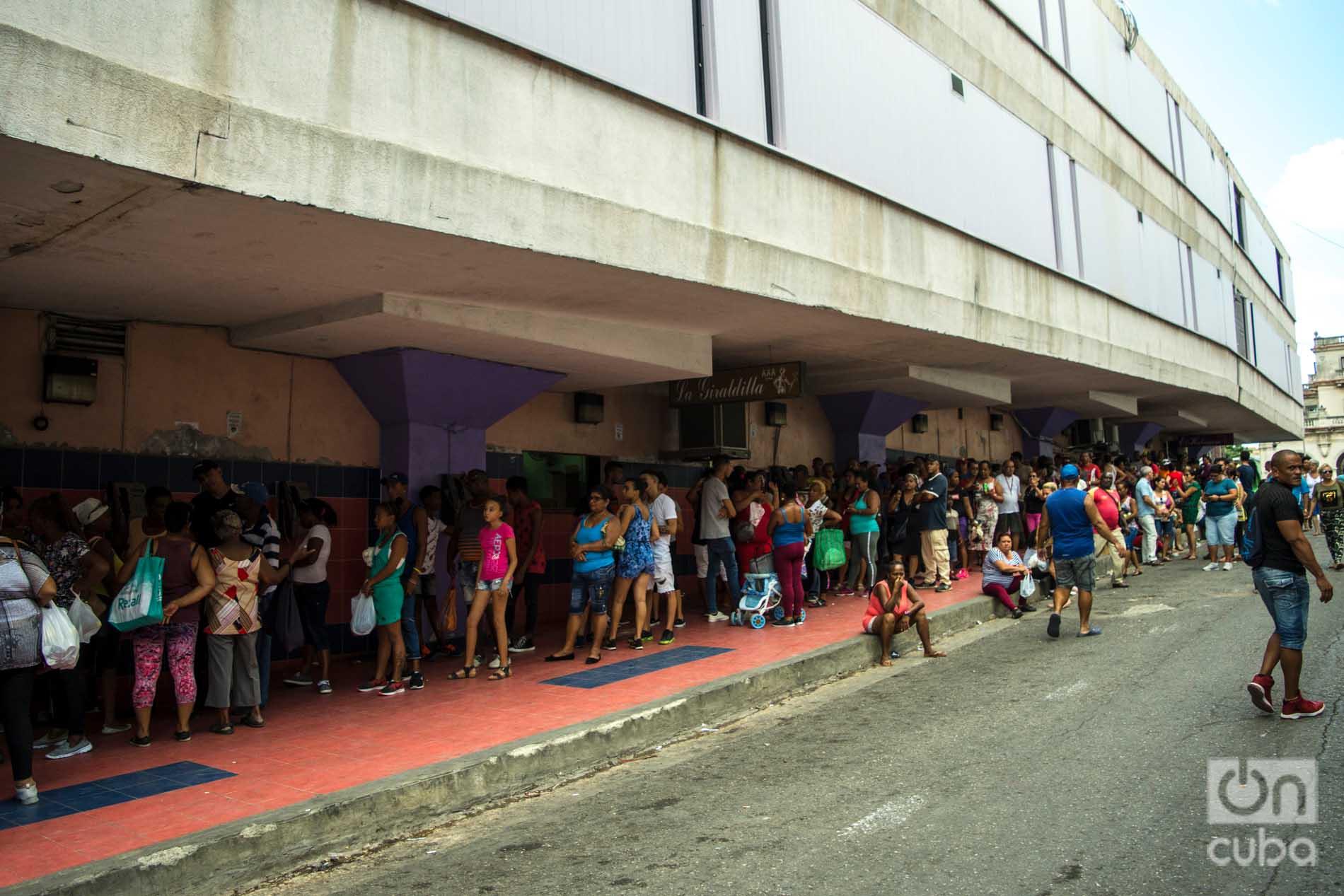 Cola para comprar pollo en el mercado Carlos III, en La Habana. Foto: Otmaro Rodríguez.