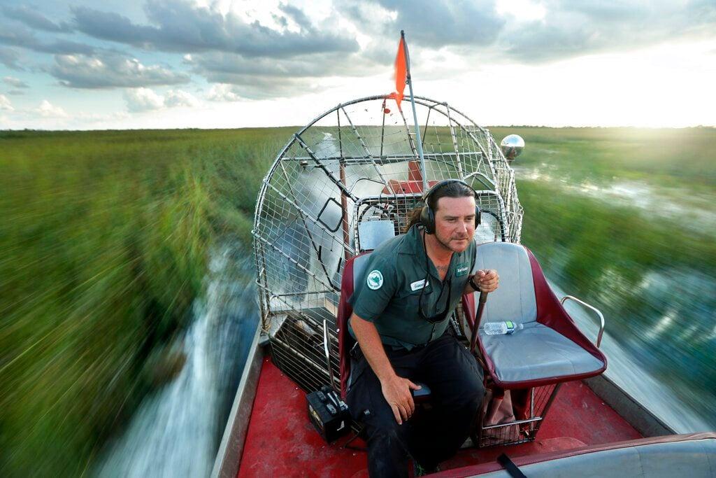 En esta imagen, tomada el 22 de octubre de 2019, Gianni Magrini, guía de tours, pilota una embarcación sobre una zona de vegetación en el Parque Nacional Everglades. Foto: AP/Robert F. Bukaty