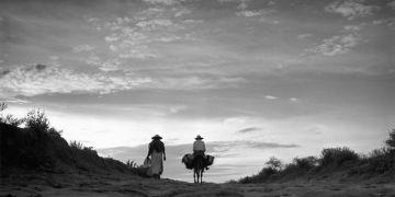 """""""Nada de esto es cierto. Arrieros en un camino"""", 1949. Foto: Juan Rulfo."""