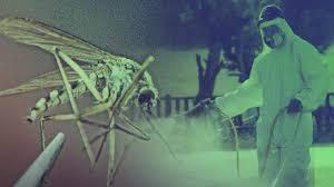 El Virus del Nilo en Sevilla: dos muertos, 39 casos y 23 ...