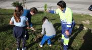 El alumnado del colegio Juan de la Cierva realiza una plantación frente al centro