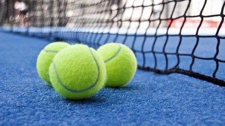 Deportes ofrece 13.000 plazas en 28 escuelas deportivas municipales
