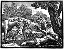 la-vacca-la-capretta-la-pecora-e-il-leone
