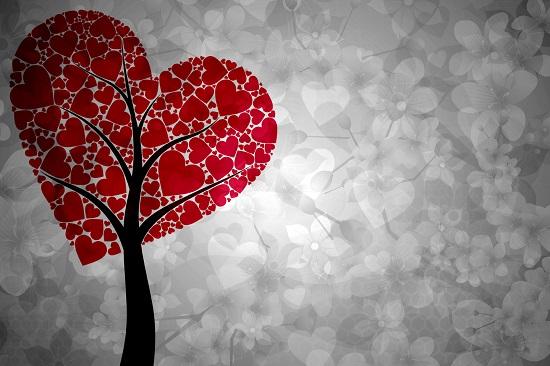 amore-albero-cuore