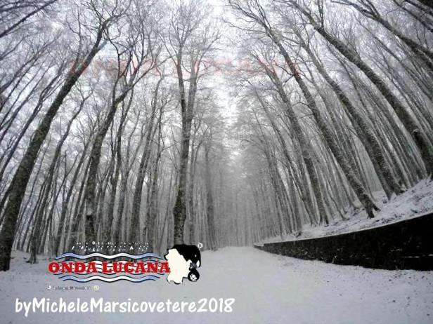 Immagine tratta da repertorio di Onda Lucana by Michele Marsicovetere 2018 Sellata.jpg