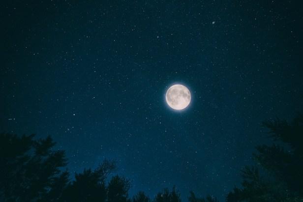 night-2938792_960_720.jpg